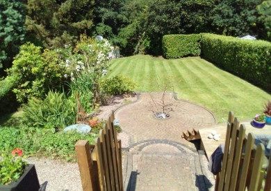 Lare Cutting and Treatment | Lee's Garden Services